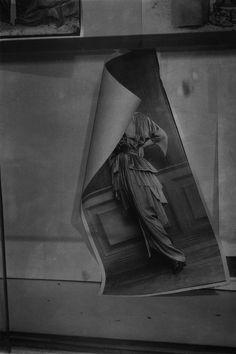 Image result for photographer belgium pavilion venice