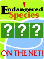 This article from Education World offers 5 engaging lessons for learning about endangered species. Some of the lesson require research and others use role playing. The species charades lesson allows the students to pick an animal and role play acting it out to the class.