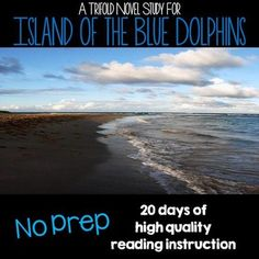 This product contains foldable novel study trifolds for the book Island of the Blue Dolphins. Designed to be used whole-class, small group, or as an individual book study. Each section of the foldable trifold focuses on a different essential reading comprehension skill and aligns with state and Common Core standards.