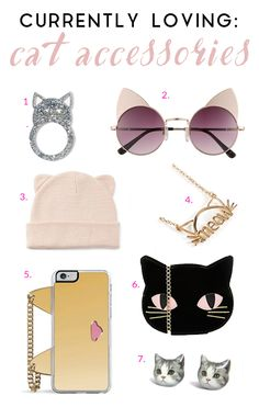 7 cat themed accessories to delight even the most passionate cat fan.