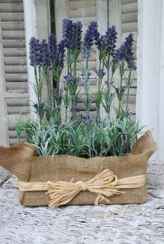 Burlap blue wedding flowers. Loved this idea...this is a fresh lavender plant in a burlap wrapped container with raffia...could do if you like!!!