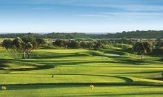 Campo de Golfe - Quinta do Lago - Algarve