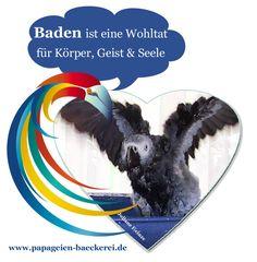Baden ist nicht nur herrlich sondern soooo gesund :-) www.papageien-baeckerei.de