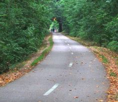 Capital Crescent Trail in MD/DC. Best running, biking, walking trail ever.