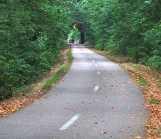 Capital Crescent Trail in MD/DC. Best running, biking, walking trail ever.