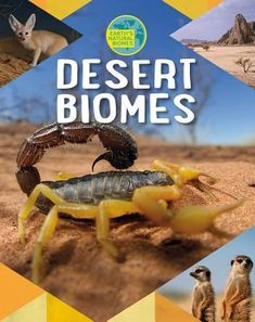 This beautiful book gives readers core information about subtropical, polar, coastal, and rain shadow desert biomes. Find out where each kind is found, how animals and plants have adapted to lack of rain, who lives in these deserts, and how humans impact life there. May 2018