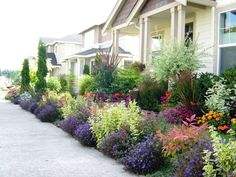 Front yard landscape design. Impatiens, Pansies, Lobelia for the annuals. Base  around shrubs: Barberry, Nandina, Euonymous, Lavender, Rhododendrons, Phormiums. Dappled Willow tree. [yardshare.com]