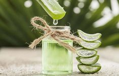 Aloe vera has long been used as an herbal medicine. But, have you ever used aloe vera for diabetes? Read on this article to know the 7 reasons to use aloe vera Aloe Vera For Skin, Aloe Vera Hair Mask, Gel Aloe, Aloe Vera Gel, Home Remedies, Natural Remedies, Holistic Remedies, Herbal Remedies, Homemade Toner