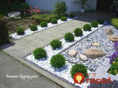 There are endless possibilities for your front garden! We've sourced 30 of the best front garden ideas to inspire you to get creative. Perennial Grasses, Perennials, Front Yard Garden Design, California Decor, Artificial Hedges, Mediterranean Plants, Stone Landscaping, Paving Stones, Succulents