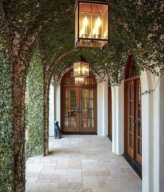 Beautiful covered breezeway featuring creeping fig by Thompson Custom Homes {from Things That Inspire - top pinned images of March 2014}