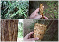weaving cedar