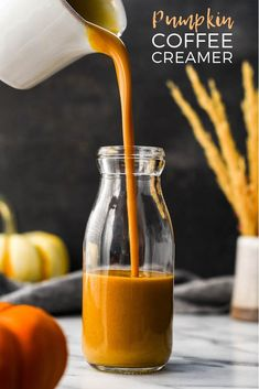 This Paleo & Vegan Homemade Pumpkin Coffee Creamer recipe is a healthy & delicious way to spruce up your morning cup of coffee in the fall! This healthy coffee creamer recipe is gluten-free, grain-free, dairy-free and has no refined sugar but is still irr Pumpkin Coffee Creamer, Healthy Coffee Creamer, Dairy Free Coffee Creamer, Vanilla Coffee Creamer, Coffee Creamer Recipe, Coffee Cups, Coffee Talk, Coffee Drinks, Vegan Pumpkin