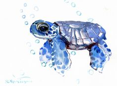 "This stylish ""Baby Tortoise Blue"" watercolor print by Suren Nersisyan comes in black frame and ready-to-hang. Features a brightly colored rendering of a young sea turtle. Art Aquarelle, Watercolor Paintings, Watercolor Tattoo, Painting Prints, Painting & Drawing, Art Prints, Baby Tortoise, Blue Framed Art, Art Tutorials"