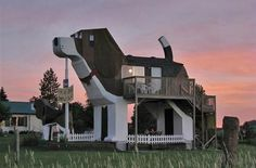 "I think these people took the term ""dog house"" a bit literally.."