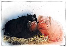 Ralph Steadman- Animal Farm