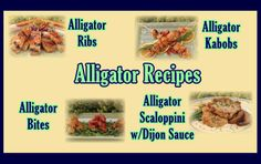 Alligator recipes