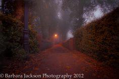 Words, words, words...: Nurture Photography Autumn Photo Challenge - Orange/Warmth