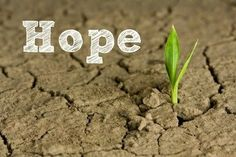 Lord, please water the tiny seed of hope in my heart. May it grow in spite of my circumstances and become stong and unwavering in you!