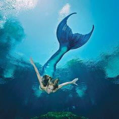 Silicone mermaid tail by Mernation Mermaid Man, Mermaid Cove, Real Mermaids, Mermaids And Mermen, Magical Creatures, Sea Creatures, Weeki Wachee Mermaids, Professional Mermaid, Silicone Mermaid Tails