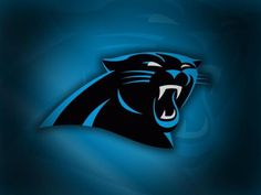 Google Image Result for http://wwwcache.wralsportsfan.com/asset/football/nfl/panthers/2008/09/24/3602068/1328136675-CarolinaPanthers_800x600-600x450.jpg