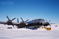 B-29 ....Kee Bird in Snow. This photo was taken by my friend Tim Wright.