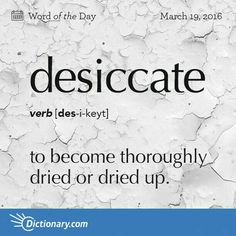 desiccate = to become thoroughly dried or dried up. to dry thoroughly; dry up. to preserve (food) by removing moisture; Fancy Words, Big Words, Latin Words, Words To Use, Pretty Words, Cool Words, Unusual Words, Rare Words, Unique Words