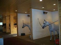 Arquitetura Equestre - Arquitetura Equestre