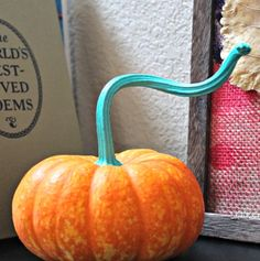 Pumpkin with Blue Stem