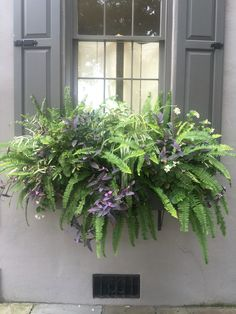 Best 15 Stunning Summer Planter Ideas to Beautify Your Home Awesome plant combinations for window boxes Window Box Plants, Window Box Flowers, Window Planter Boxes, Planter Ideas, Porch Planter, Indoor Window Boxes, Container Gardening Vegetables, Container Plants, Container Flowers