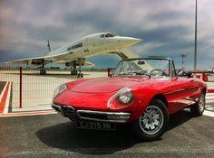 Spider & Concorde