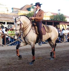 The equestrian show in Portugal in a small town