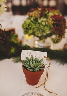 succulent wedding favour for enchanted forest wedding