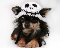 Dog Hat crochet Skeleton Halloween Beanie hat by PetitDogApparel