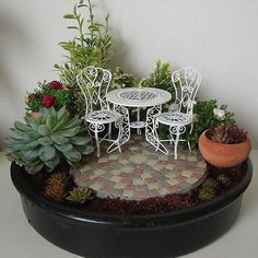 I finally made my own fairy garden! Only the miniature watering can still lacks… I finally made my own fairy garden! Only the miniature watering can still lacks…Cool 48 Beautiful Fairy Garden Ideas That Easy To Make It.My Small Obsession promotes Garden Crafts, Garden Projects, Garden Art, Garden Ideas, Terrarium Cactus, Mini Fairy Garden, Fairy Gardening, Vegetable Gardening, Mini Cactus Garden