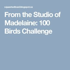 From the Studio of Madelaine: 100 Birds Challenge
