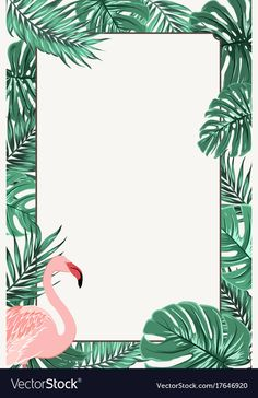 Rectangle border frame template decorated with green tropical jungle palm tree l Flamingo Wallpaper, Bird Wallpaper, Summer Wallpaper, Wallpaper Backgrounds, Flamingo Birthday, Flamingo Party, Tropical Birds, Tropical Leaves, Frame Template