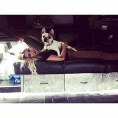 "Emma Slater on Instagram: ""Back on the bus for cuddles #PetuniaOnTour"""