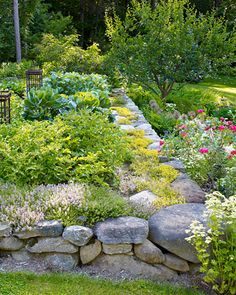 vegetable garden lined with rocks (love the moss & flowers growing on rocks)