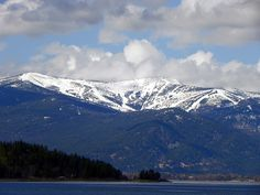 Schweitzer, from the lake