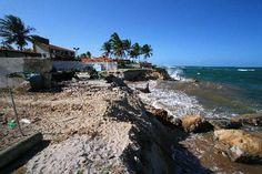 """Praias de Pernambuco são engolidas pelo mar  A placa em um dos muros em frente ao mar de Maracaípe, em Ipojuca, perdeu o sentido. Há cerca de três anos, o proprietário do imóvel, chateado com os abusos dos motoristas, fixou o aviso de que os carros parados ali estariam sujeitos a guincho. O mar avançou e, nos últimos meses, as ondas tomaram o lugar dos carros. Para proteger-se da força da água, o proprietário colocou um """"paredão"""" d  Publicação: 17/03/2013 10:00   (Leia [+] clicando na…"""