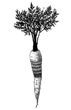 """""""The day is coming when a single carrot, freshly observed, will set off a revolution."""" - Paul Cezanne Patterned Carrot Black and White Digital Art Print by iiixtheory, $20.00"""
