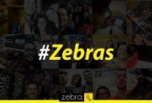 Pessoas que amam suas listras! #Zebra #DeuZebra #Zebras #equipe #comunicação #amizade #amigos #listras