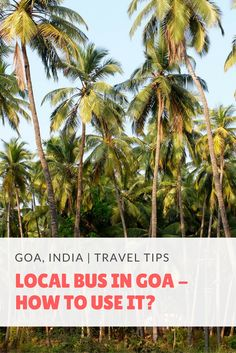 Local Buses in Goa - How to Use Them?