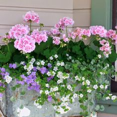 Lawn and Garden Tools Basics Gorgeous Spring Planter Ideas 9 Front Porch Flowers, Window Box Flowers, Flower Boxes, Window Boxes, Container Flowers, Container Plants, Container Gardening, Decoration Plante, Spring Plants