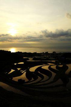 Sunset in terraced rice fields, Awaji, Hyogo, Japan