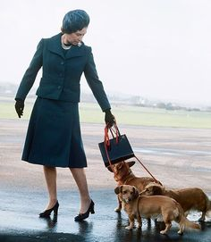 Queen Elizabeth II and her corgis.