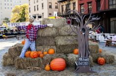 The Chester NYC joins fellow neighbors at Saturday, October 26 in Gansevoort Plaza for Harvest Fest