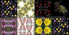 Silk scarf range at Central Deborah Gold Mine shop… | Sharon Greenaway