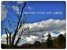 Never give up Tree