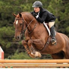 Equitation cant wait until i can do this